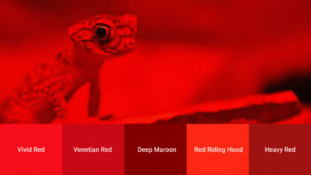 red color swatch